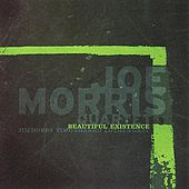 Play & Download Beautiful Existence by Joe Morris | Napster