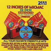 12 Inches Of MicMac, Vol. 2 by Various Artists