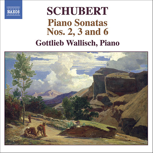 Schubert: Piano Sonatas Nos. 2, 3 And 6 by Franz Schubert