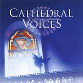 Play & Download Cathedral Voices - Sacred Choruses by Terry Edwards | Napster