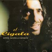 Entre Vareta Y Canasta by Diego El Cigala