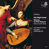 Play & Download Purcell: Odes for Saint Cecilia's Day by Collegium Vocale Gent and Philippe Herreweghe | Napster