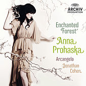 Play & Download Enchanted Forest by Various Artists | Napster