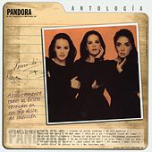 Play & Download Antología by Pandora | Napster