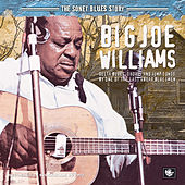 Play & Download The Sonet Blues Story by Big Joe Williams | Napster