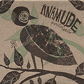 Play & Download Pentimento by Anamude | Napster
