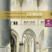 Bach : Cantatas by Orchestra Of Collegium Vocale