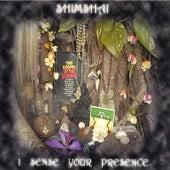 I Sense Your Presence by Shimshai
