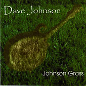Play & Download Johnson Grass by David Johnson | Napster