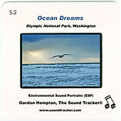 Play & Download Ocean Dreams by Gordon Hempton | Napster