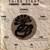 Play & Download Symbionese Liberation Album by Third Sight | Napster