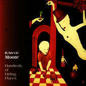 Hundreds Of Hiding Places by R Stevie Moore