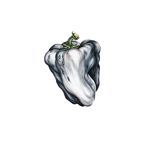 White Pepper by Ween