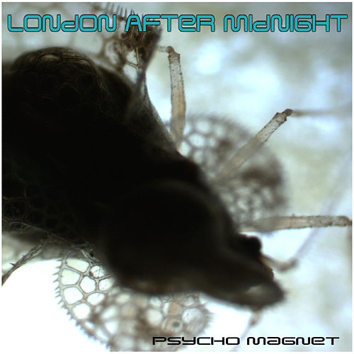 Play & Download Psycho Magnet by London After Midnight | Napster