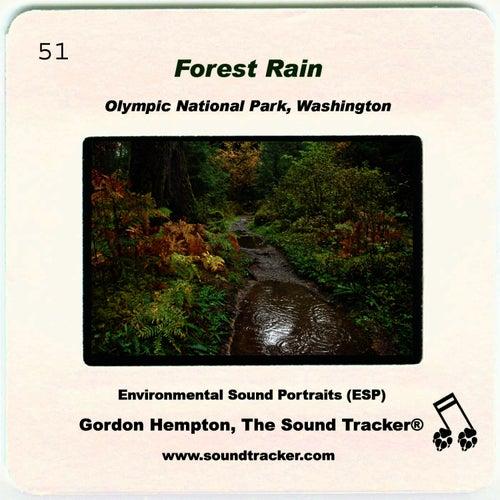 Forest Rain by Gordon Hempton