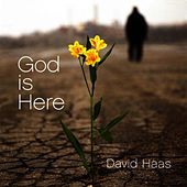 Play & Download God Is Here: Liturgical Music for the Journey of Reconciliation by David Haas | Napster