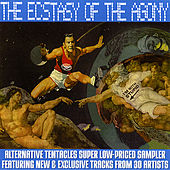 Play & Download The Ecstasy of the Agony by Various Artists | Napster