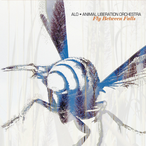 Play & Download Fly Between Falls by ALO (Animal Liberation Orchestra) | Napster
