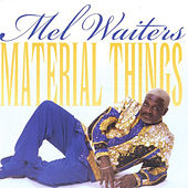 Material Things by Mel Waiters