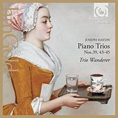 Play & Download Haydn: Piano Trios by Trio Wanderer | Napster