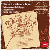 Play & Download Wie einst in schöner'n Tagen - Salonmusik der Belle Epoque by Various Artists | Napster