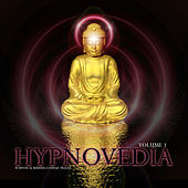 Hypnovedia Vol. 1 by Various Artists