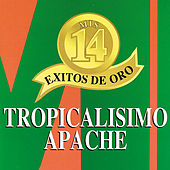 Play & Download Mis 14 Exitos De Oro by Tropicalisimo Apache | Napster