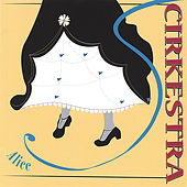 Play & Download Alice by Cirkestra | Napster