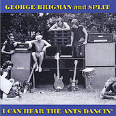 I Can Hear The Ants Dancin' by George Brigman
