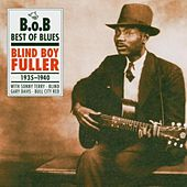 The Remaining Titles 1935-1940 by Blind Boy Fuller