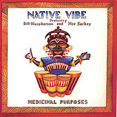 Play & Download Medicinal Purposes by Native Vibe | Napster