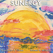 Play & Download Sunergy by Michael Williams | Napster