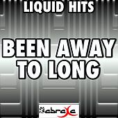 Been Away Too Long - A Tribute to Soundgarden by Liquid Hits