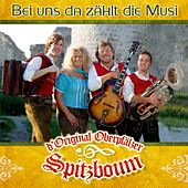 Play & Download Bei uns da zählt die Musi by D'original Oberpfälzer Spitzboum | Napster