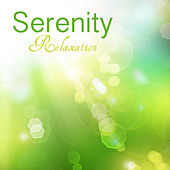 Serenity Relaxation Music: 101 Relaxing Songs and Music for Relaxation, Serenity, Sound Therapy, Spa and Deep Sleep Music Relax with Delta Waves and Isochronic Tones for Wellness, Massage, Yoga, Healing Meditation by Serenity Relaxation Music Spa