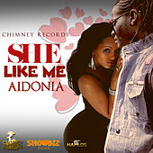 She Like Me - Single by Aidonia