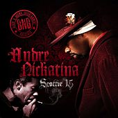 Play & Download Scottie 15 by Andre Nickatina | Napster