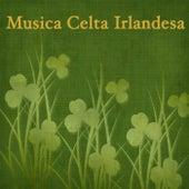 Musica Celta Irlandesa de Musica Celta Dueto