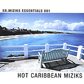 Play & Download Hot Caribbean Miziks by Various Artists | Napster