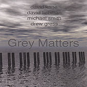Grey Matters by David Kane