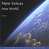 New Voices New World by Scott Johnson