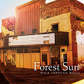 Play & Download Walk Through Walls by Forest Sun | Napster