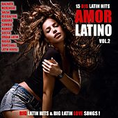 Amor Latino, Vol. 2 - 15 Big Latin Hits & Latin Love Songs (Bachata, Merengue, Salsa, Reggaeton, Kuduro, Mambo, Cumbia, Urbano, Ragga) by Various Artists