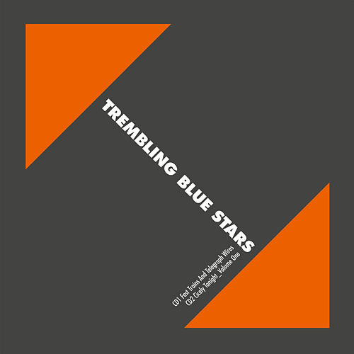 Play & Download Fast Trains And Telegraph Wires by Trembling Blue Stars | Napster