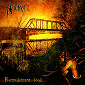 Play & Download Recrudescent Feed by Numic | Napster
