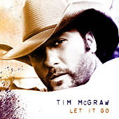 Let It Go by Tim McGraw