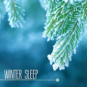 Winter Sleep - Sleepy Music to Relax With Nature Sleepy Sounds & Relax Melodies by Winter Sleep Music Academy