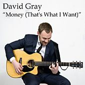 Money (That's What I Want) (From Jim Beam's Live Music Series) by David Gray