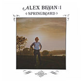 Springboard by Alex Bevan