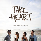 Take Heart by The Sam Willows